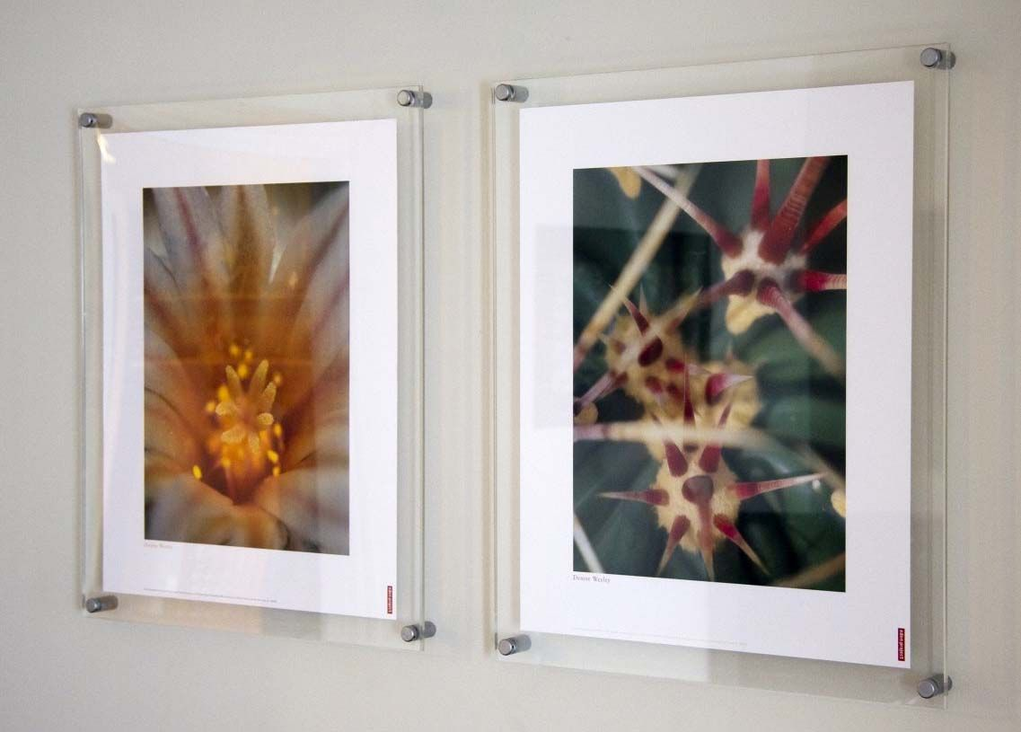 Framing Ideas - PictureFramingStudio